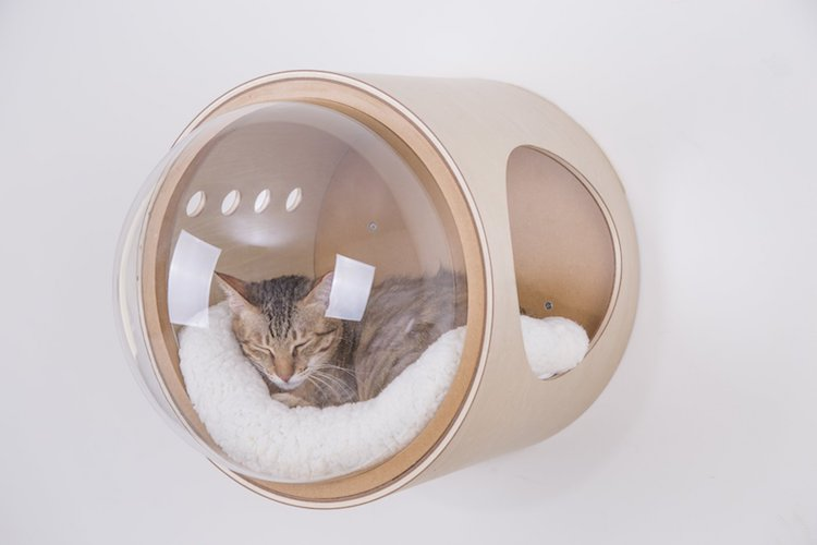 spaceship-cat-bed-3.jpg